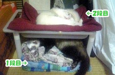進化(!?)した簡易ベッド