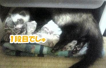 簡易ベッドの1段目☆