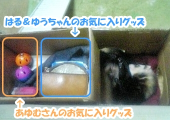 おもちゃ置き場☆