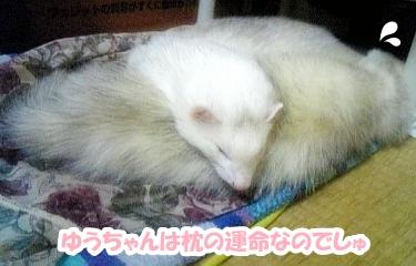 ゆうちゃん枕?