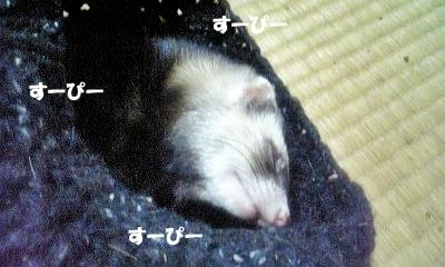 爆睡中のあゆむさん☆