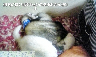 お休みタイム2☆