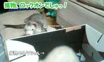 ターゲットロックオン☆