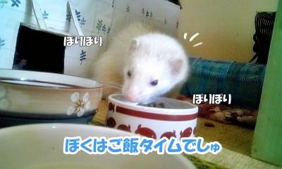 ご飯タイム☆
