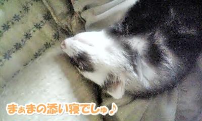 あゆむさんの添い寝☆