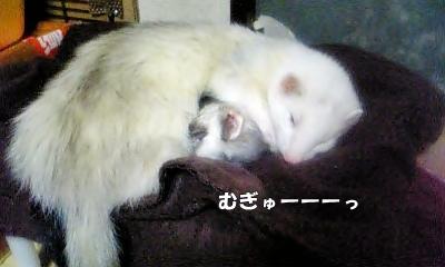 ゆうちゃん&あゆむさん☆