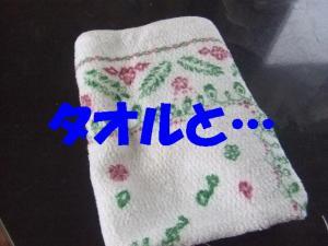 20070330110035.jpg
