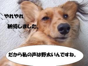 20070403213923.jpg