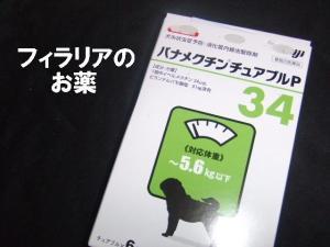 20070604202017.jpg