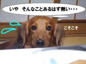 20070610133538.jpg