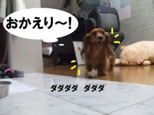 20070621214358.jpg