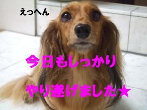 20070630001452.jpg