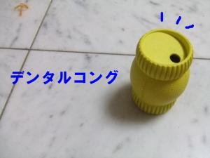 20070728160538.jpg