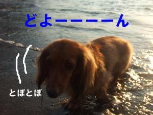 20070819213550.jpg