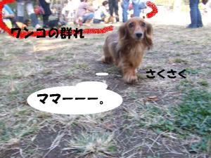 20071021204835.jpg
