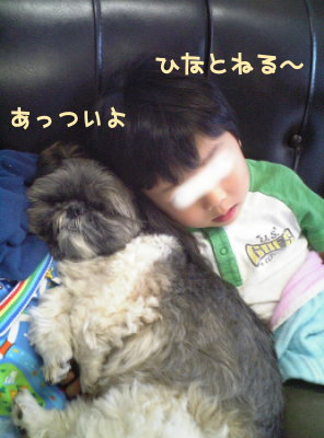 Image0087.jpg