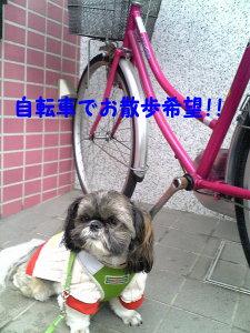 Image0146.jpg
