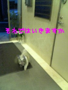 Image0150.jpg