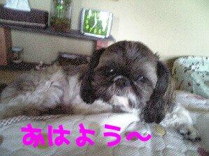 Image0164.jpg