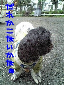 Image0166.jpg
