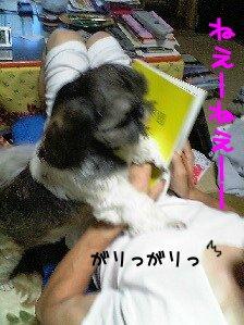 Image0170.jpg