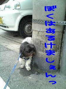 Image0184.jpg