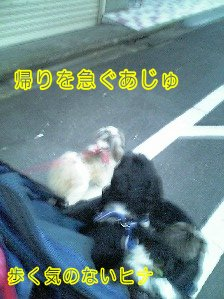 Image0213.jpg