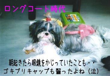 a-sei1_20071012163130.jpg