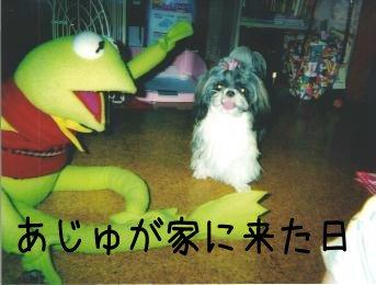 a-syoki_20071011161924.jpg