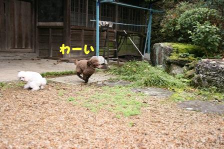 IMG_0877a.jpg