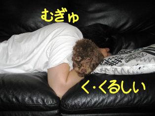 IMG_1135A.jpg