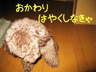 IMG_1210a.jpg