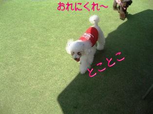 IMG_2818.jpg