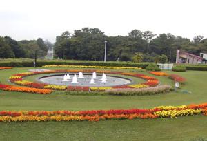 circularflowerbed