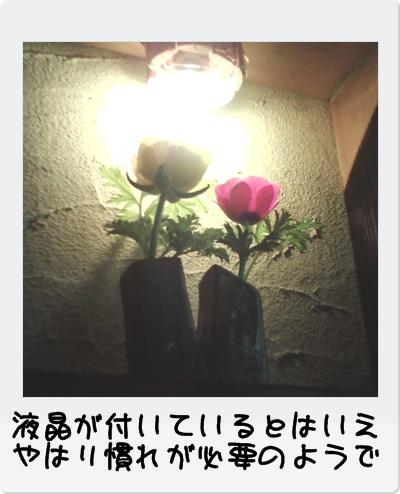 PICT0053.jpg