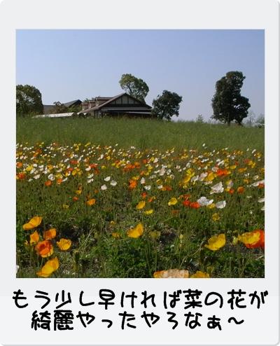 R0013010.jpg