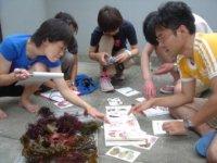 海藻ワークショップの様子(06年6月・伊豆初島)