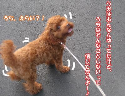 20070917101245.jpg