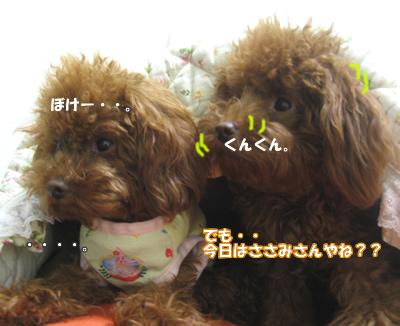 ブログ10・29 01256