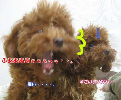 ブログ10・29 012541