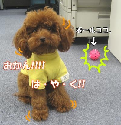 ブログ10・29 072125
