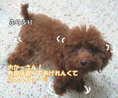 ブログ10・29 125125156