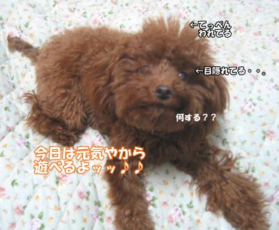 ブログ10・29 125125161