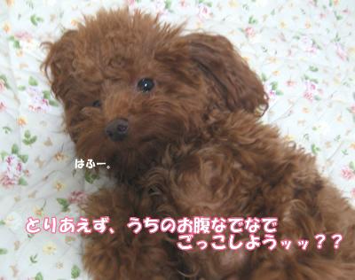 ブログ10・29 125012598