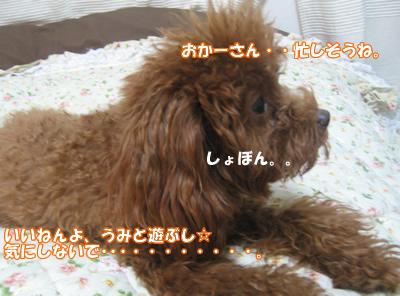 ブログ10・29 125112587