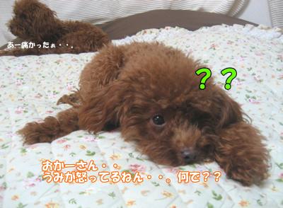 ブログ10・29 125125199