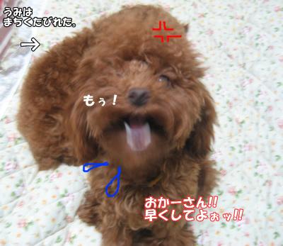 ブログ10・29 125125212559