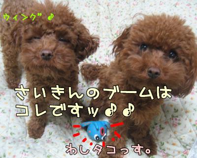 12.14blog 0012548