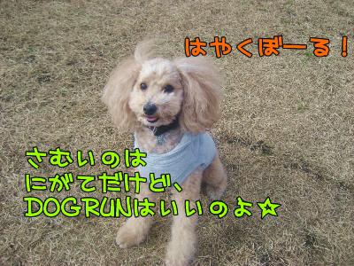 12.15blog 0012548
