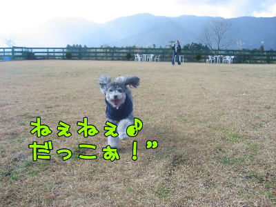 12.15blog 0012352